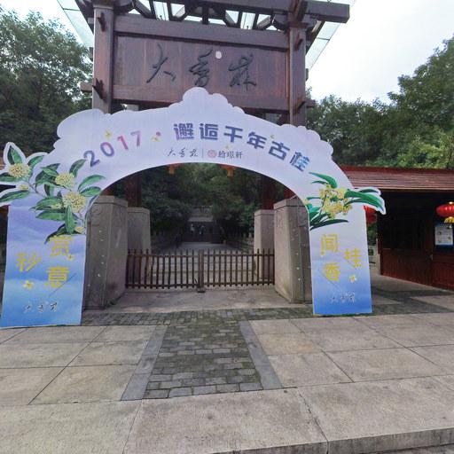 森鸟pano6全景相机柯桥大香林景区全景案列欣赏